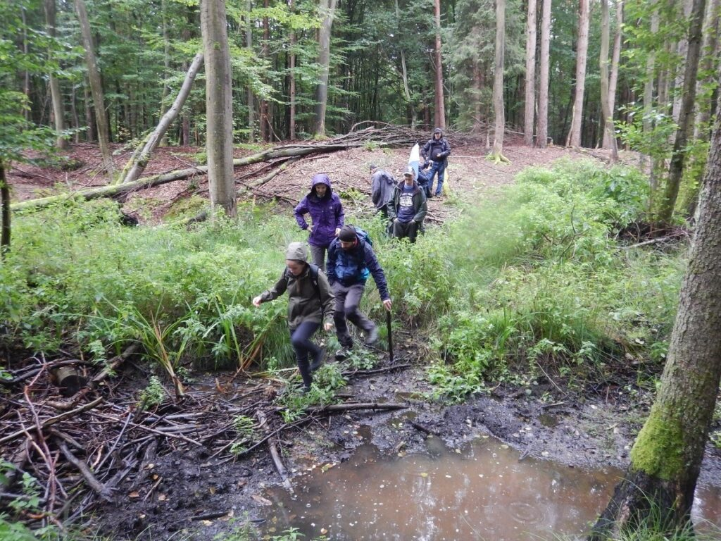 Nature Guides crossing a muddy stream in a forest
