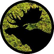 Logo Briedžių takais, Simonas Kiela